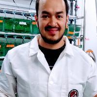 Armando Elizalde Velazquez