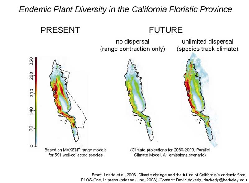California S Native Plant Species In Peril From Global Warming