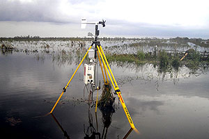 Photo of a Stick-Net probe following Hurricane Ike east of Winnie, TX.  The probe  experienced about 3.5 ft. of storm surge flooding from 10 miles inland, and collected  a complete data record.