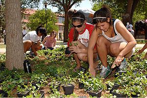 Arbor Day is part of the two-week Spring into Green celebration, full of events focusing on making Texas Tech and the community more environmentally friendly.