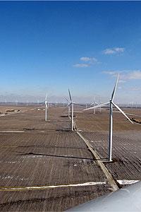 Wind Power Could Affect Critical Texas Wetlands | June