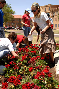 Students, faculty and staff to join together to beautify campus.
