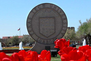Tulips at Texas Tech