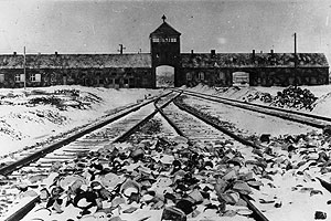 More than 65 years after the liberation of the Auschwitz-Birkenau concentration camps, Holocaust education is now included in many secondary and post-secondary curricula.