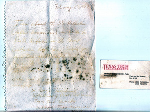 The letter was difficult to read because of sun damage, but the Australian couple said the Texas Tech business card was in good condition.