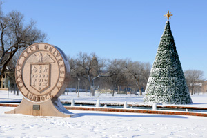 Students, faculty and the Lubbock community gather to see the tree and celebrate the holiday season on the Texas Tech campus.