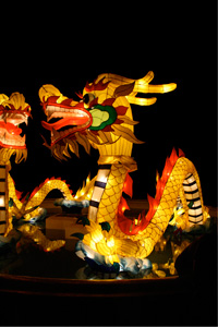 Lunar New Year events are provided to educate individuals about the history and traditions of the Asian culture.