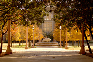 The assessment revealed that for every dollar the state  of Texas invests in the Texas Tech University System, the state's economy sees  more than $16 returned.