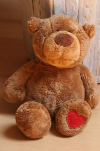 The Family Law Society at the Texas Tech School of Law will be collecting teddy bears for the recently adopted children of Lubbock