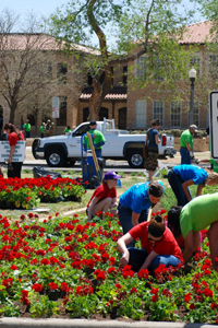 One way Texas Tech students can help with sustainable efforts is participating in the annual Arbor Day tradition.