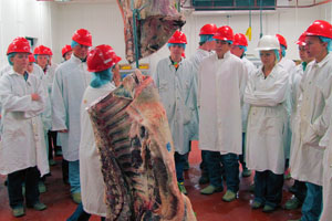 4-H students visit meat lab