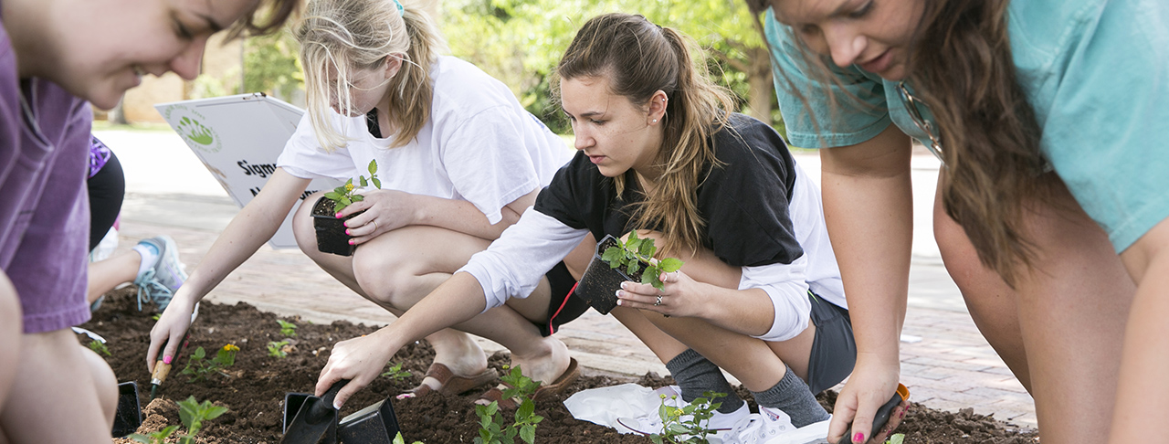 Arbor Day: Red Raiders Contribute to Campus Beautification
