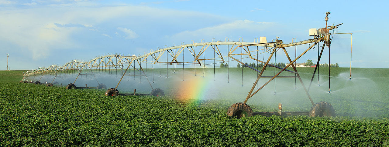 Texas Tech Centers Work to Promote Water Quality, Conservation