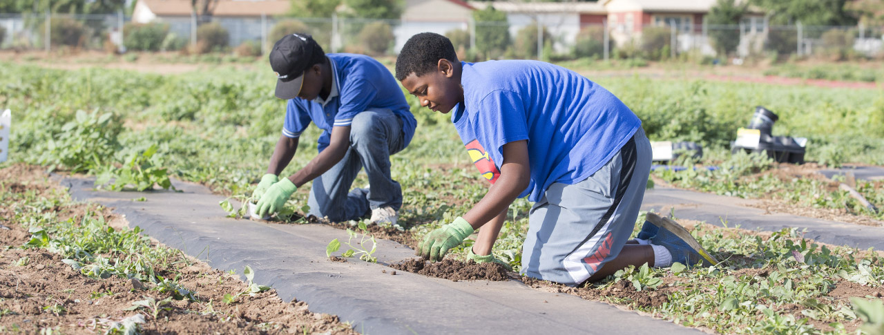 East Lubbock Students Get Hands Dirty Through Summer Garden Program