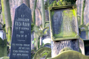 Jewish cemetery near Warsaw