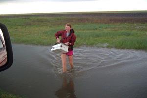 Dillingham in Water