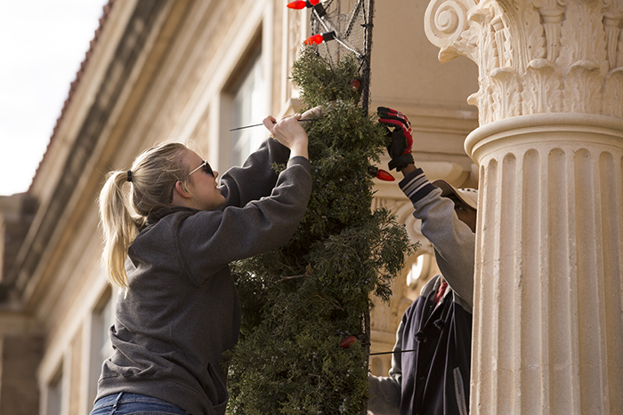 Carol of Lights Preparations