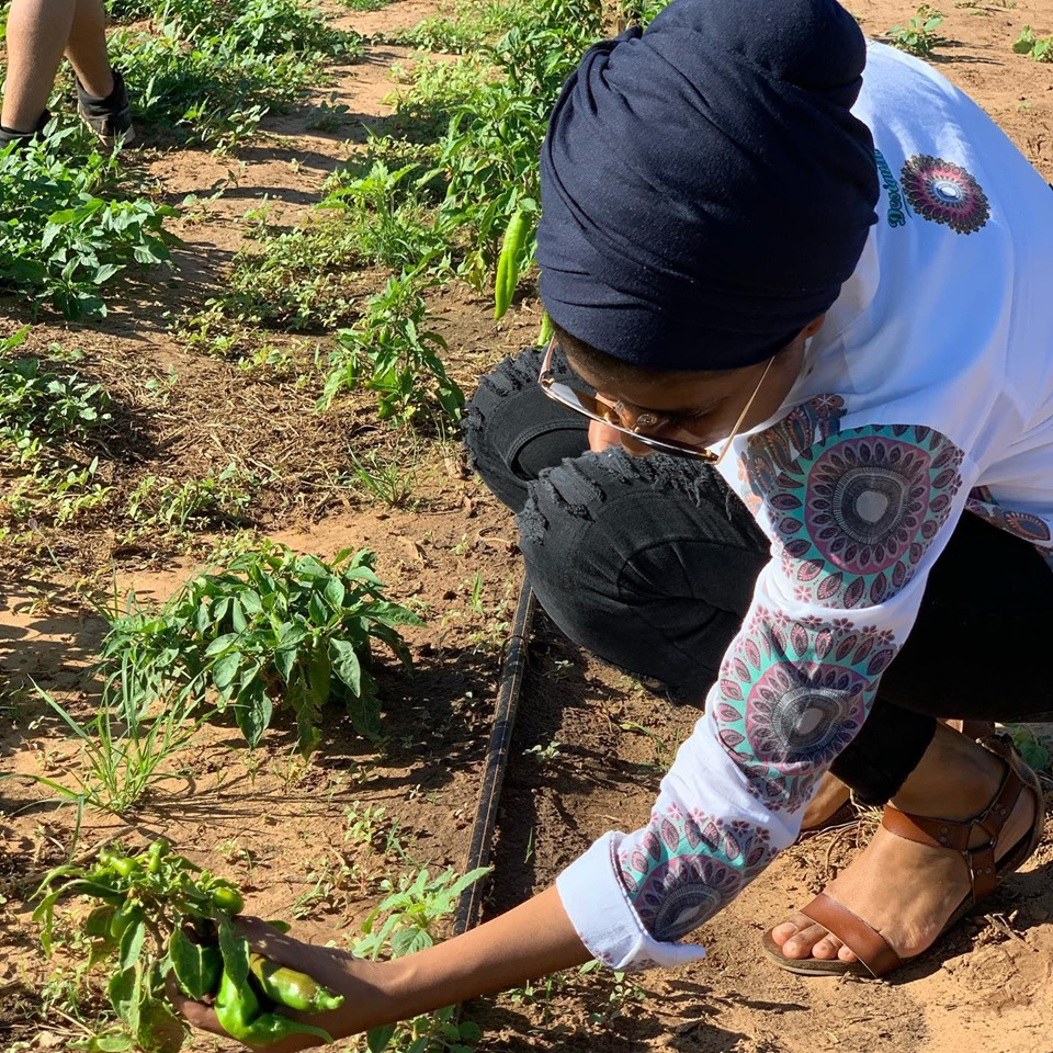 Mandela Fellows at the Grub Farm